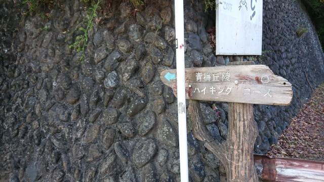 kawagoe_2020103006