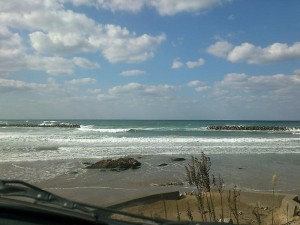 hiroshima_20141108_1