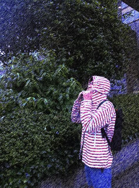 rainfair_image