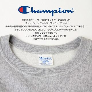champion_info-s