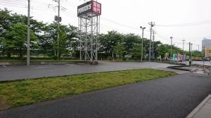 DSC_0012546
