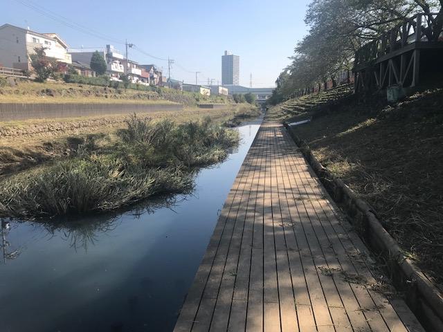 saitama_201710 (1)