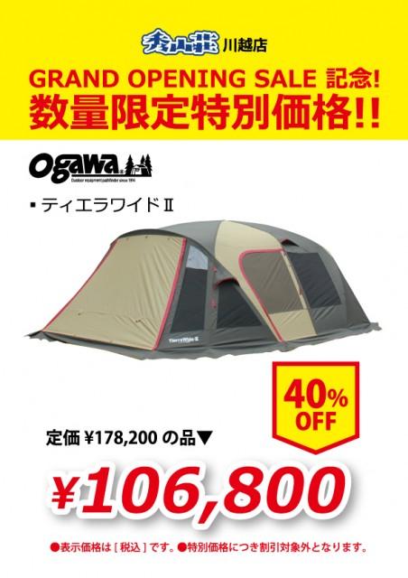 KAWAGOE_20190311-10