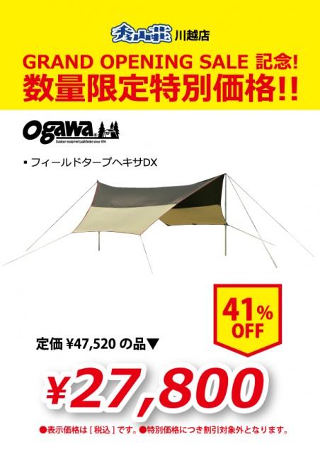 KAWAGOE_20190311-13