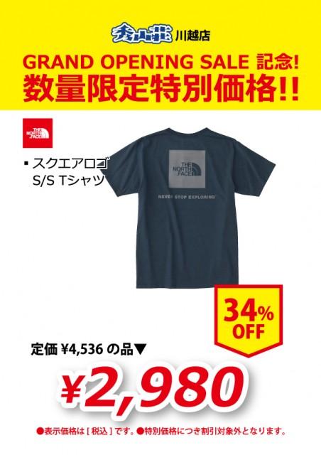 KAWAGOE_20190311-30