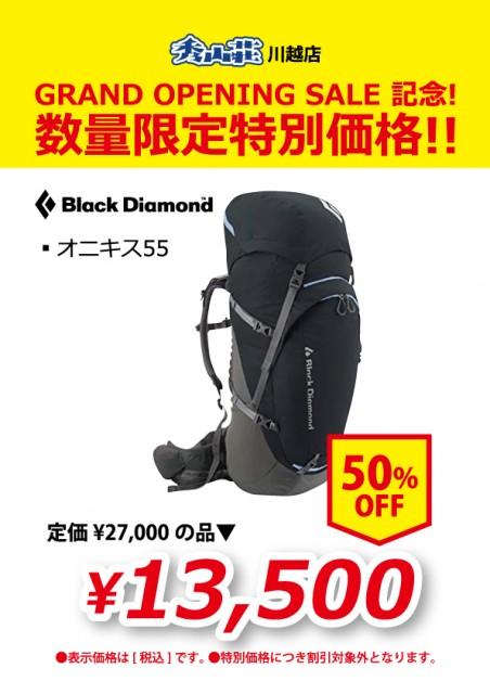KAWAGOE_20190311-22