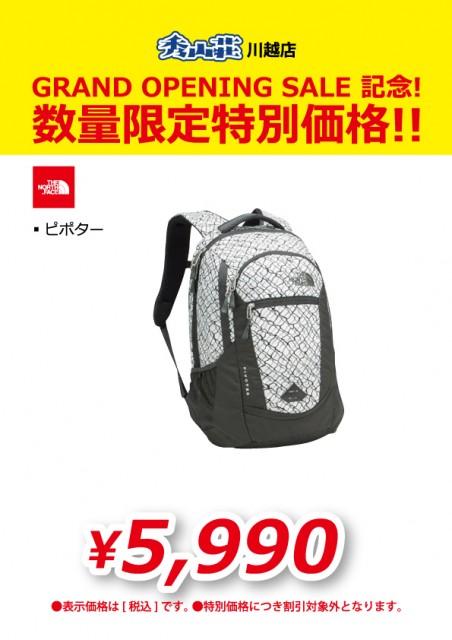 KAWAGOE_20190311-24