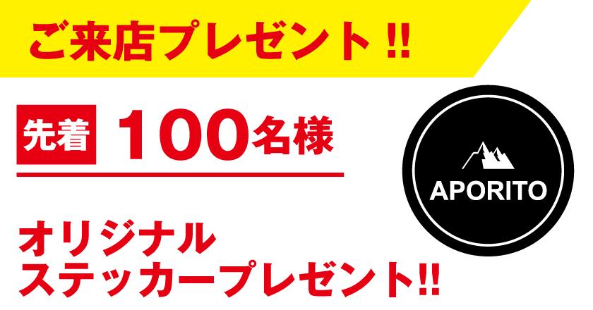 APichikawabnr_2011-2