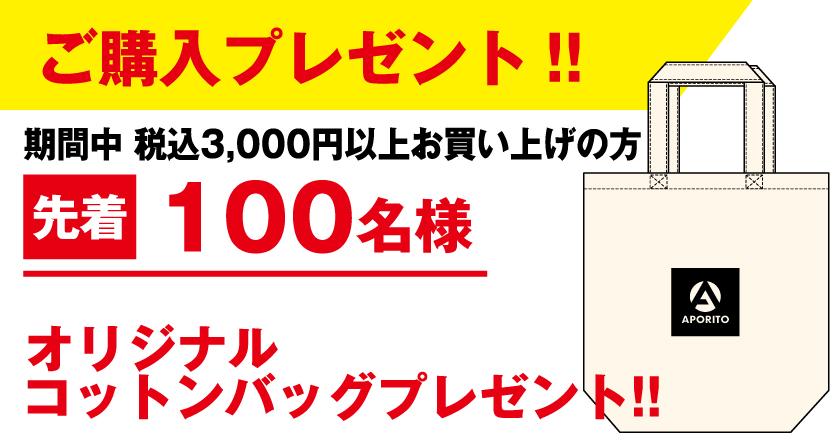 APichikawabnr_2011-3